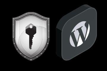 Copy of WordPress Speed Optimization 1